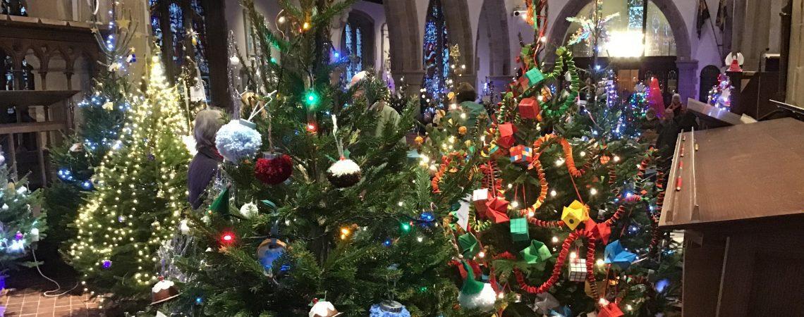 Christmas Trees lit up